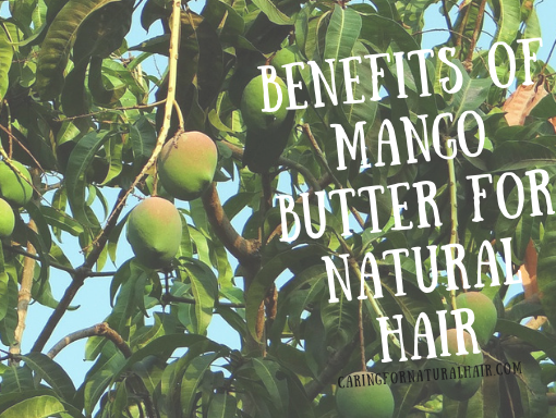 benefits of mango butter for natural hair